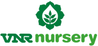 VNR Nursery - Research based horticulture company